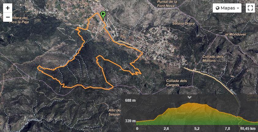 Resumen semana 16 trail